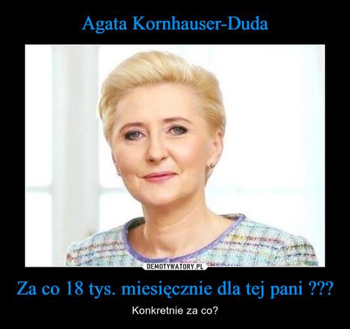 Agata Kornhauser-Duda Za co 18 tys. miesięcznie dla tej pani ???