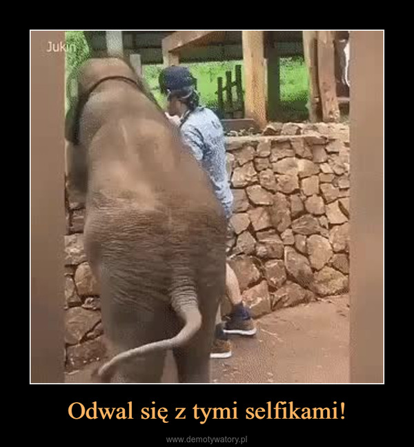 Odwal się z tymi selfikami! –