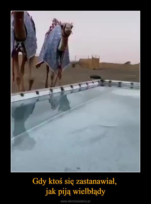 Gdy ktoś się zastanawiał, jak piją wielbłądy –