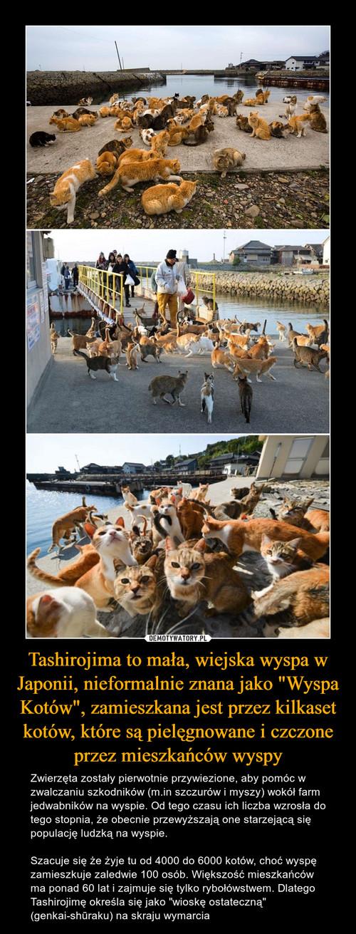 """Tashirojima to mała, wiejska wyspa w Japonii, nieformalnie znana jako """"Wyspa Kotów"""", zamieszkana jest przez kilkaset kotów, które są pielęgnowane i czczone przez mieszkańców wyspy"""