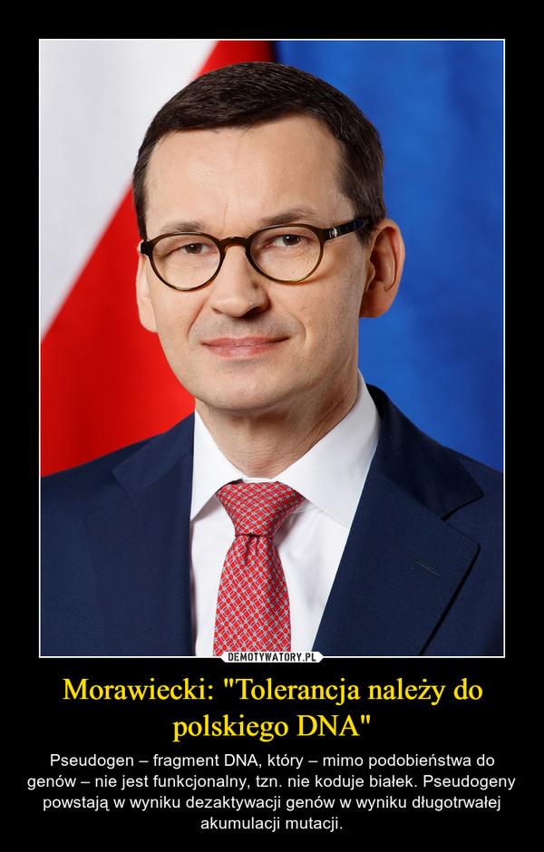 """Morawiecki: """"Tolerancja należy do polskiego DNA"""" – Pseudogen – fragment DNA, który – mimo podobieństwa do genów – nie jest funkcjonalny, tzn. nie koduje białek. Pseudogeny powstają w wyniku dezaktywacji genów w wyniku długotrwałej akumulacji mutacji."""