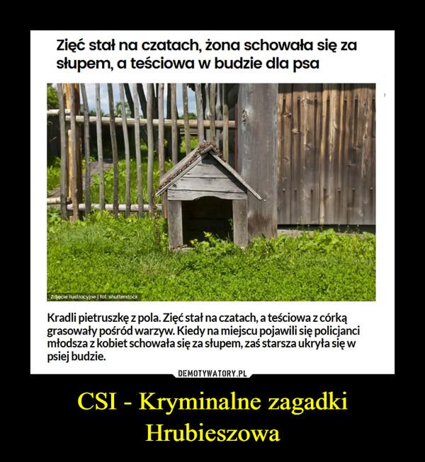 CSI - Kryminalne zagadki Hrubieszowa –  Kradli pietruszkę z pola. Zięć stał na czatach, a teściowa z córką grasowały pośród warzyw. Kiedy na miejscu pojawili się policjanci młodsza z kobiet schowała się za słupem, zaś starsza ukryła się w psiej budzie.