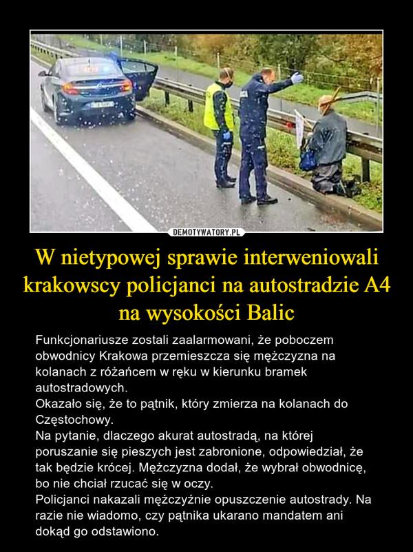W nietypowej sprawie interweniowali krakowscy policjanci na autostradzie A4 na wysokości Balic – Funkcjonariusze zostali zaalarmowani, że poboczem obwodnicy Krakowa przemieszcza się mężczyzna na kolanach z różańcem w ręku w kierunku bramek autostradowych.Okazało się, że to pątnik, który zmierza na kolanach do Częstochowy.Na pytanie, dlaczego akurat autostradą, na której poruszanie się pieszych jest zabronione, odpowiedział, że tak będzie krócej. Mężczyzna dodał, że wybrał obwodnicę, bo nie chciał rzucać się w oczy.Policjanci nakazali mężczyźnie opuszczenie autostrady. Na razie nie wiadomo, czy pątnika ukarano mandatem ani dokąd go odstawiono.