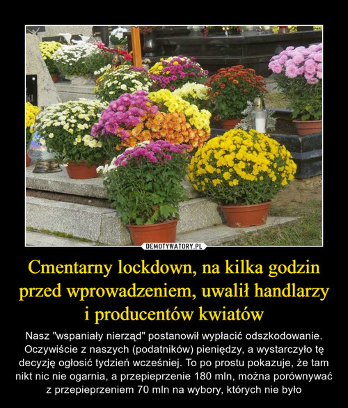 Cmentarny lockdown, na kilka godzin przed wprowadzeniem, uwalił handlarzy i producentów kwiatów