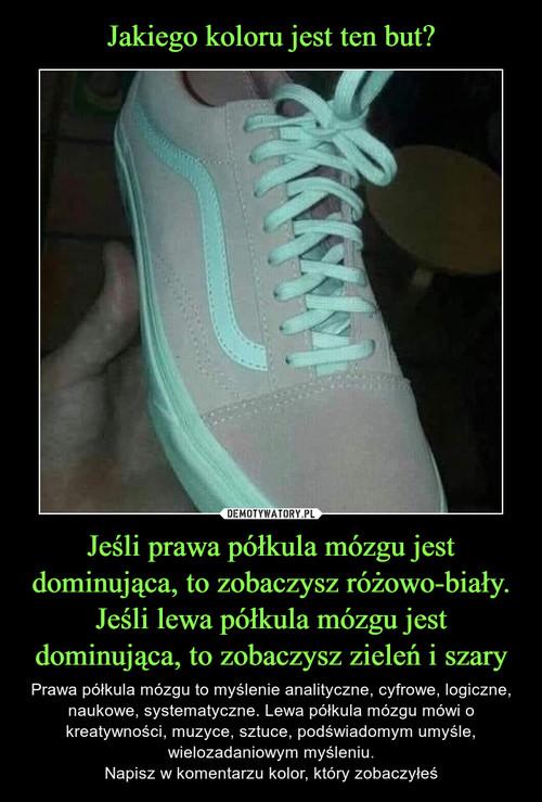 Jakiego koloru jest ten but? Jeśli prawa półkula mózgu jest dominująca, to zobaczysz różowo-biały. Jeśli lewa półkula mózgu jest dominująca, to zobaczysz zieleń i szary