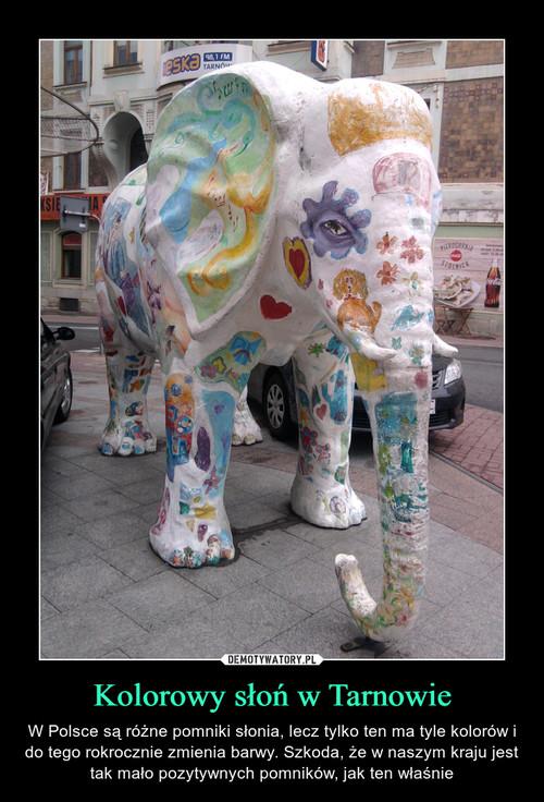 Kolorowy słoń w Tarnowie