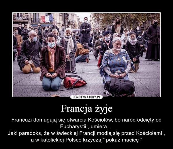 """Francja żyje – Francuzi domagają się otwarcia Kościołów, bo naród odcięty od Eucharystii , umiera..  Jaki paradoks, że w świeckiej Francji modlą się przed Kościołami , a w katolickiej Polsce krzyczą """" pokaż macicę """""""