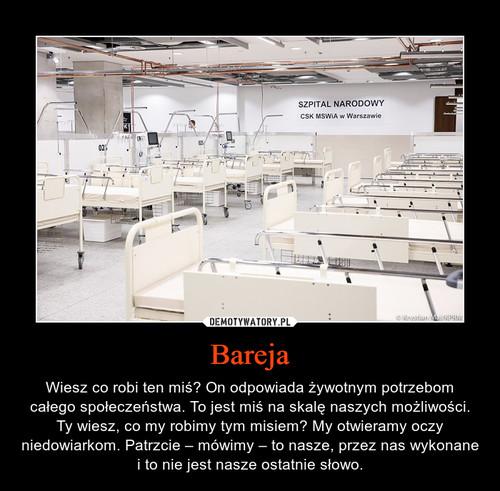 Bareja