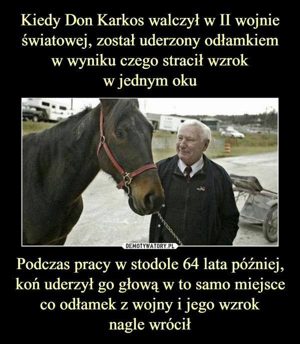 Podczas pracy w stodole 64 lata później, koń uderzył go głową w to samo miejsce co odłamek z wojny i jego wzroknagle wrócił –