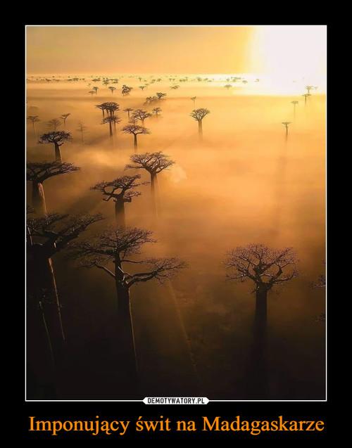 Imponujący świt na Madagaskarze