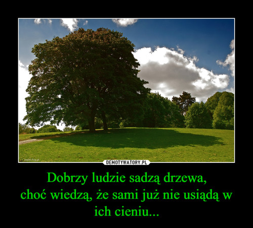Dobrzy ludzie sadzą drzewa, choć wiedzą, że sami już nie usiądą w ich cieniu...