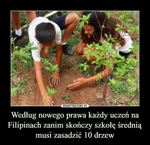 Według nowego prawa każdy uczeń na Filipinach zanim skończy szkołę średnią musi zasadzić 10 drzew
