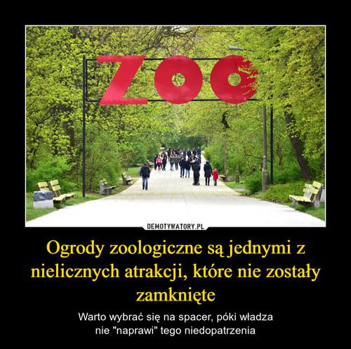 Ogrody zoologiczne są jednymi z nielicznych atrakcji, które nie zostały zamknięte