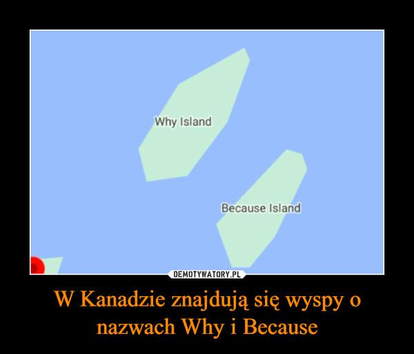 W Kanadzie znajdują się wyspy o nazwach Why i Because –