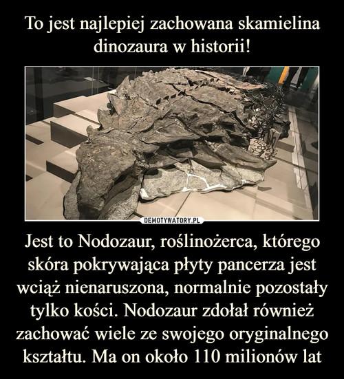 To jest najlepiej zachowana skamielina dinozaura w historii! Jest to Nodozaur, roślinożerca, którego skóra pokrywająca płyty pancerza jest wciąż nienaruszona, normalnie pozostały tylko kości. Nodozaur zdołał również zachować wiele ze swojego oryginalnego kształtu. Ma on około 110 milionów lat
