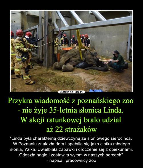 Przykra wiadomość z poznańskiego zoo  - nie żyje 35-letnia słonica Linda.  W akcji ratunkowej brało udział  aż 22 strażaków
