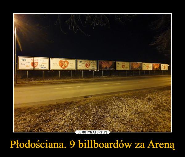 Płodościana. 9 billboardów za Areną –