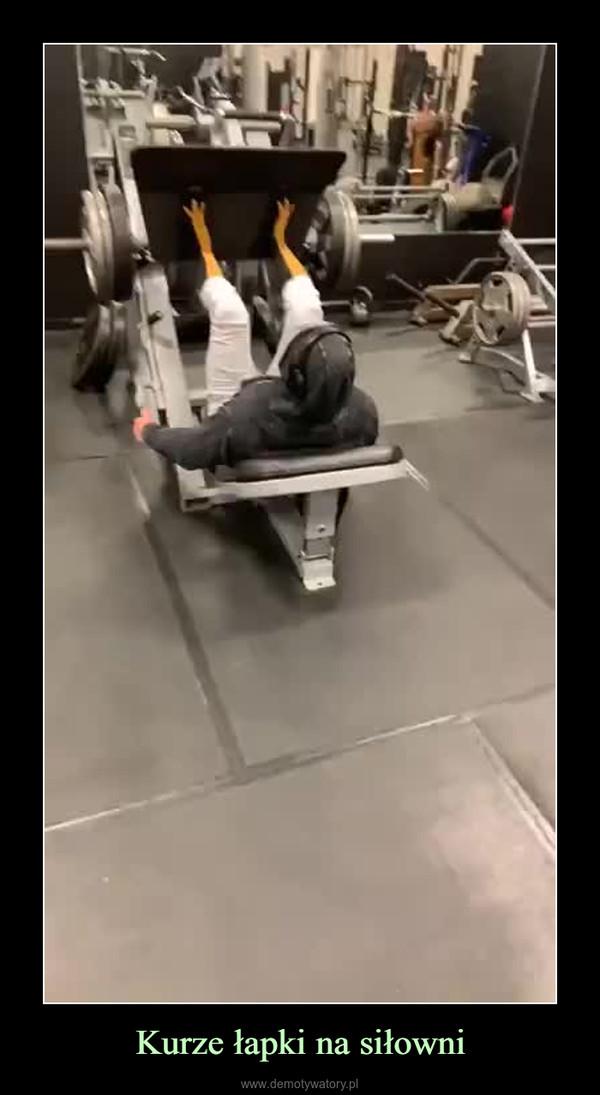 Kurze łapki na siłowni –