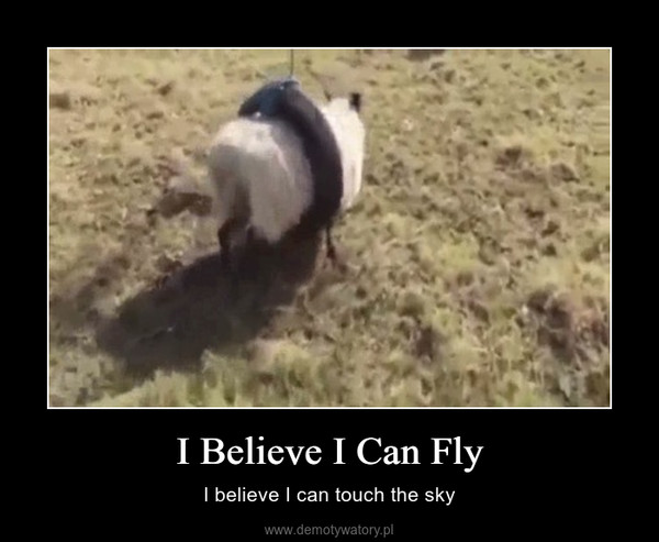 I Believe I Can Fly – I believe I can touch the sky