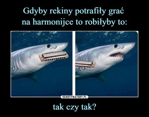 Gdyby rekiny potrafiły grać  na harmonijce to robiłyby to: tak czy tak?