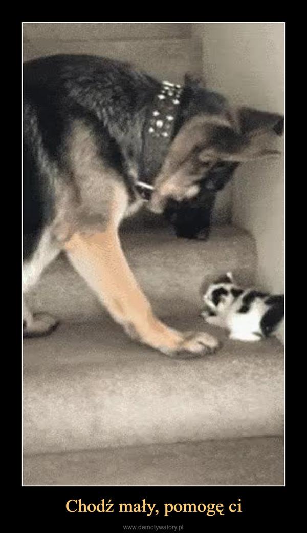 Chodź mały, pomogę ci –