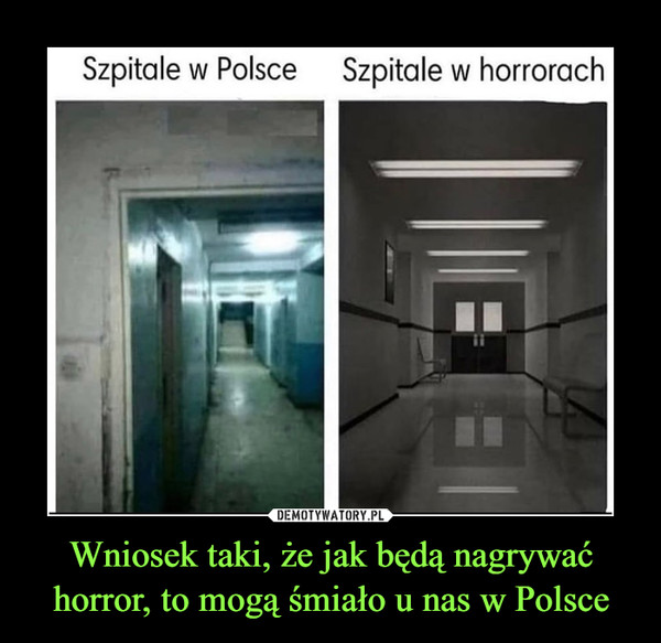 Wniosek taki, że jak będą nagrywać horror, to mogą śmiało u nas w Polsce –