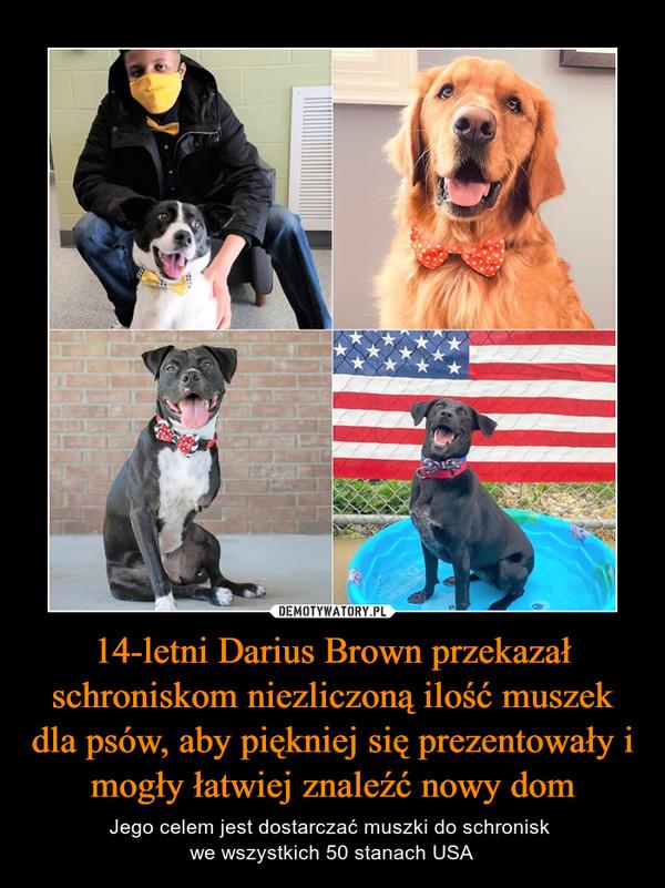 14-letni Darius Brown przekazał schroniskom niezliczoną ilość muszek dla psów, aby piękniej się prezentowały i mogły łatwiej znaleźć nowy dom – Jego celem jest dostarczać muszki do schronisk we wszystkich 50 stanach USA