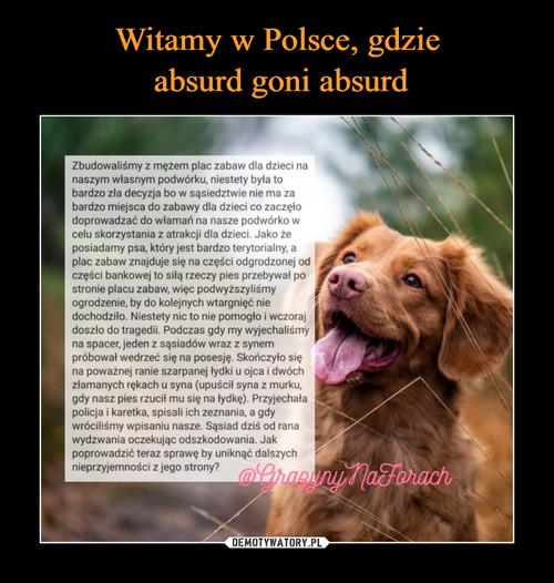 Witamy w Polsce, gdzie  absurd goni absurd
