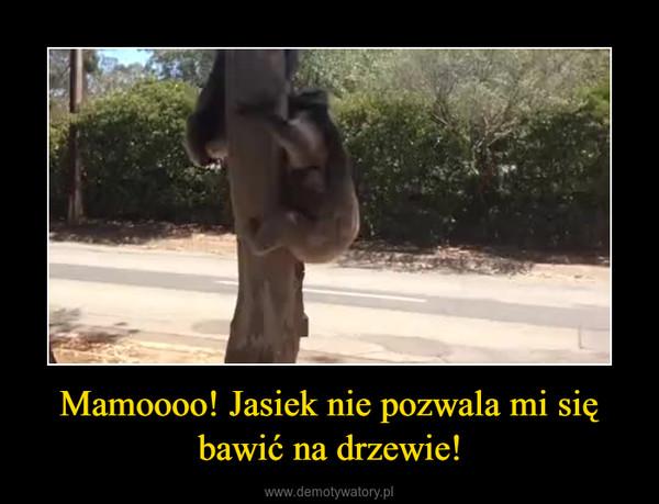 Mamoooo! Jasiek nie pozwala mi się bawić na drzewie! –