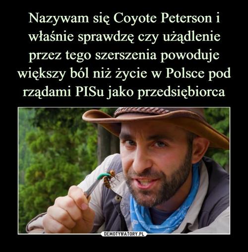 Nazywam się Coyote Peterson i właśnie sprawdzę czy użądlenie przez tego szerszenia powoduje większy ból niż życie w Polsce pod rządami PISu jako przedsiębiorca
