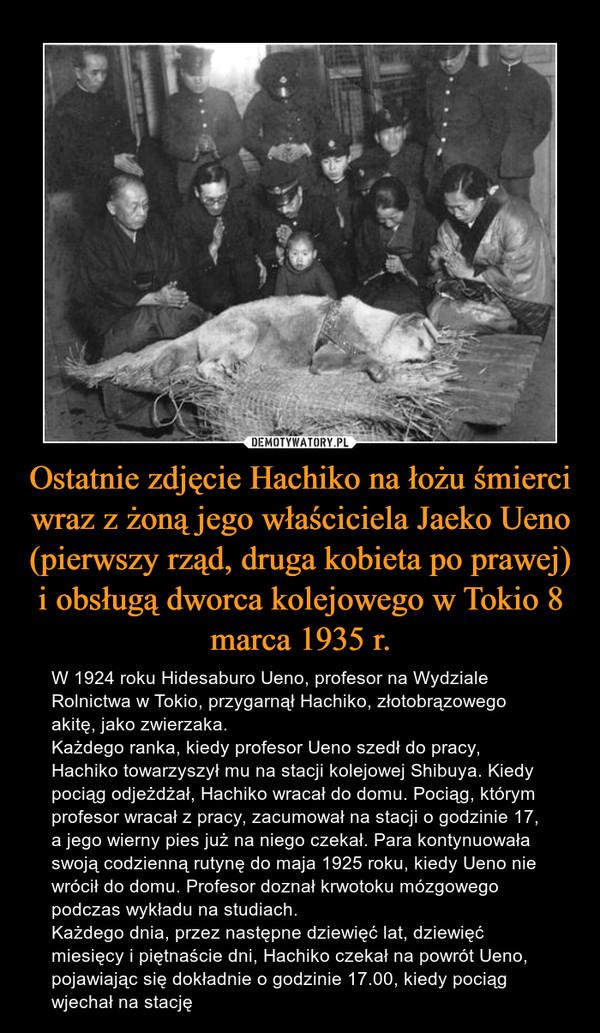 Ostatnie zdjęcie Hachiko na łożu śmierci wraz z żoną jego właściciela Jaeko Ueno (pierwszy rząd, druga kobieta po prawej) i obsługą dworca kolejowego w Tokio 8 marca 1935 r. – W 1924 roku Hidesaburo Ueno, profesor na Wydziale Rolnictwa w Tokio, przygarnął Hachiko, złotobrązowego akitę, jako zwierzaka.Każdego ranka, kiedy profesor Ueno szedł do pracy, Hachiko towarzyszył mu na stacji kolejowej Shibuya. Kiedy pociąg odjeżdżał, Hachiko wracał do domu. Pociąg, którym profesor wracał z pracy, zacumował na stacji o godzinie 17, a jego wierny pies już na niego czekał. Para kontynuowała swoją codzienną rutynę do maja 1925 roku, kiedy Ueno nie wrócił do domu. Profesor doznał krwotoku mózgowego podczas wykładu na studiach.Każdego dnia, przez następne dziewięć lat, dziewięć miesięcy i piętnaście dni, Hachiko czekał na powrót Ueno, pojawiając się dokładnie o godzinie 17.00, kiedy pociąg wjechał na stację