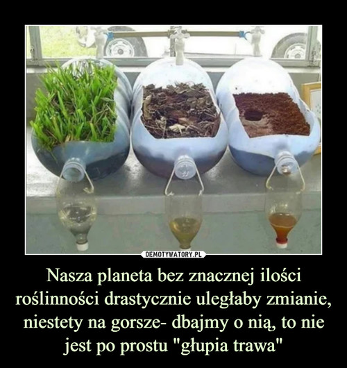 """Nasza planeta bez znacznej ilości roślinności drastycznie uległaby zmianie, niestety na gorsze- dbajmy o nią, to nie jest po prostu """"głupia trawa"""""""