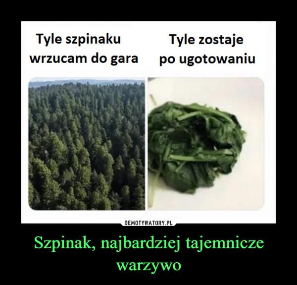 Szpinak, najbardziej tajemnicze warzywo –