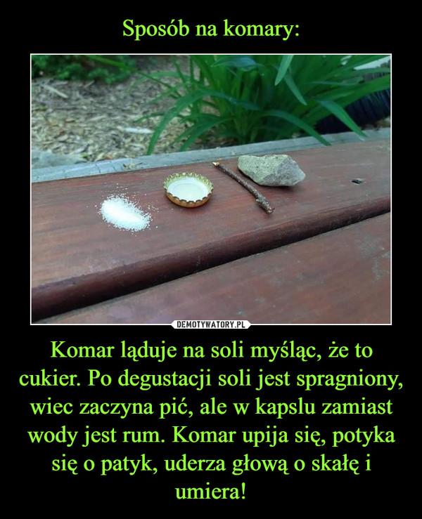 Komar ląduje na soli myśląc, że to cukier. Po degustacji soli jest spragniony, wiec zaczyna pić, ale w kapslu zamiast wody jest rum. Komar upija się, potyka się o patyk, uderza głową o skałę i umiera! –