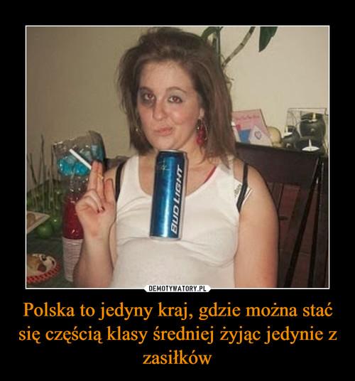 Polska to jedyny kraj, gdzie można stać się częścią klasy średniej żyjąc jedynie z zasiłków
