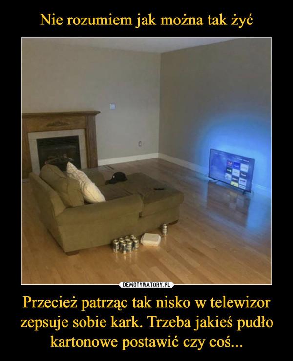 Przecież patrząc tak nisko w telewizor zepsuje sobie kark. Trzeba jakieś pudło kartonowe postawić czy coś... –