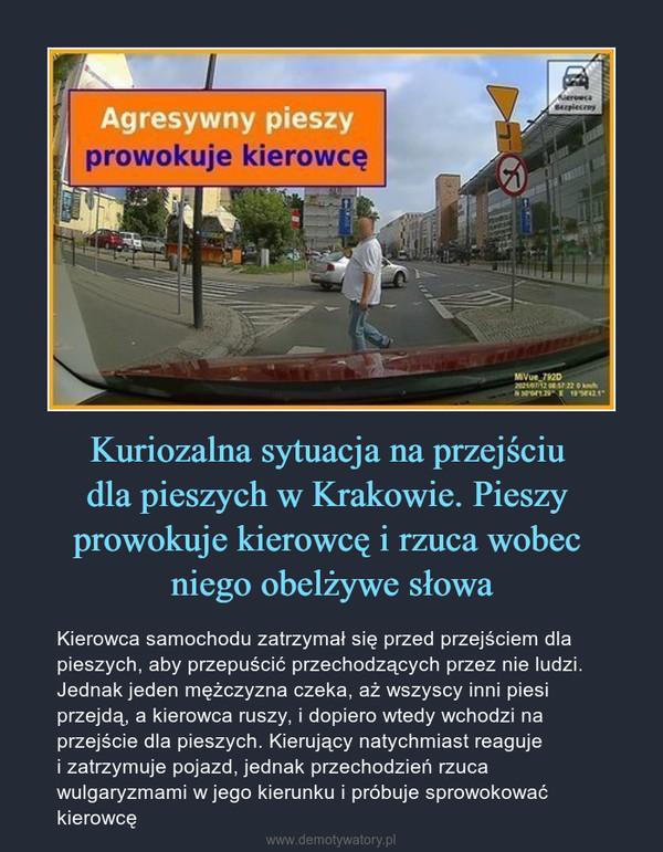 Kuriozalna sytuacja na przejściu dla pieszych w Krakowie. Pieszy prowokuje kierowcę i rzuca wobec niego obelżywe słowa – Kierowca samochodu zatrzymał się przed przejściem dla pieszych, aby przepuścić przechodzących przez nie ludzi. Jednak jeden mężczyzna czeka, aż wszyscy inni piesi przejdą, a kierowca ruszy, i dopiero wtedy wchodzi na przejście dla pieszych. Kierujący natychmiast reaguje i zatrzymuje pojazd, jednak przechodzień rzuca wulgaryzmami w jego kierunku i próbuje sprowokować kierowcę