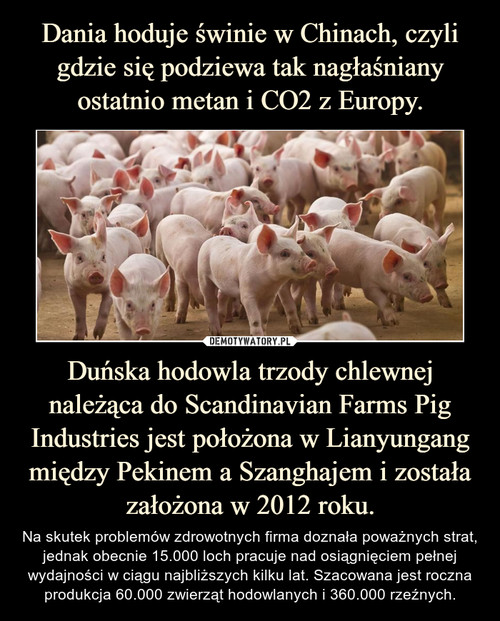 Dania hoduje świnie w Chinach, czyli gdzie się podziewa tak nagłaśniany ostatnio metan i CO2 z Europy. Duńska hodowla trzody chlewnej należąca do Scandinavian Farms Pig Industries jest położona w Lianyungang między Pekinem a Szanghajem i została założona w 2012 roku.