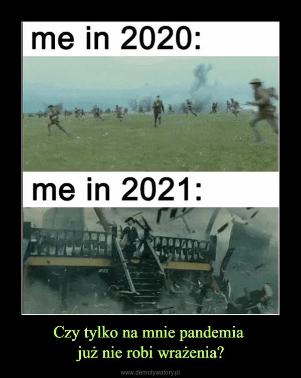 Czy tylko na mnie pandemia już nie robi wrażenia? –