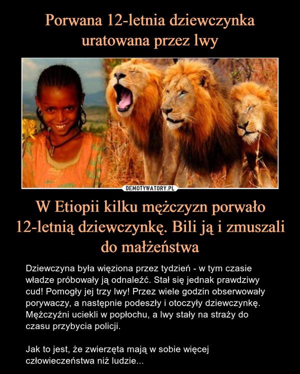 W Etiopii kilku mężczyzn porwało 12-letnią dziewczynkę. Bili ją i zmuszali do małżeństwa – Dziewczyna była więziona przez tydzień - w tym czasie władze próbowały ją odnaleźć. Stał się jednak prawdziwy cud! Pomogły jej trzy lwy! Przez wiele godzin obserwowały porywaczy, a następnie podeszły i otoczyły dziewczynkę. Mężczyźni uciekli w popłochu, a lwy stały na straży do czasu przybycia policji.Jak to jest, że zwierzęta mają w sobie więcej człowieczeństwa niż ludzie...