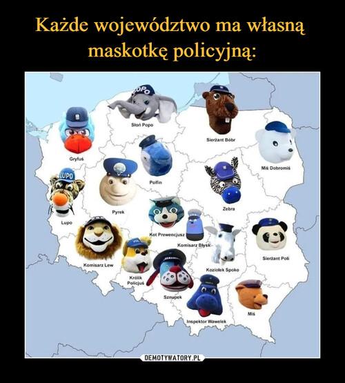 Każde województwo ma własną  maskotkę policyjną: