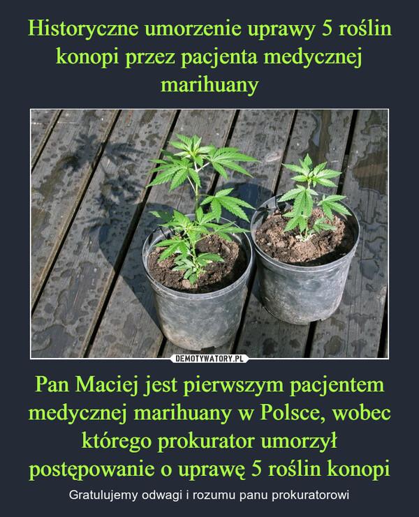 Pan Maciej jest pierwszym pacjentem medycznej marihuany w Polsce, wobec którego prokurator umorzył postępowanie o uprawę 5 roślin konopi – Gratulujemy odwagi i rozumu panu prokuratorowi
