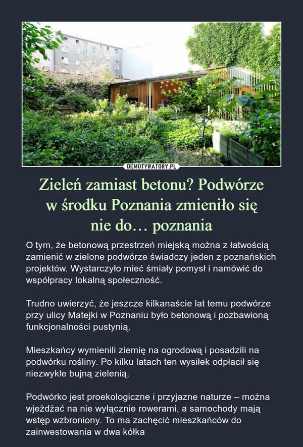 Zieleń zamiast betonu? Podwórzew środku Poznania zmieniło sięnie do… poznania – O tym, że betonową przestrzeń miejską można z łatwością zamienić w zielone podwórze świadczy jeden z poznańskich projektów. Wystarczyło mieć śmiały pomysł i namówić do współpracy lokalną społeczność.Trudno uwierzyć, że jeszcze kilkanaście lat temu podwórze przy ulicy Matejki w Poznaniu było betonową i pozbawioną funkcjonalności pustynią.Mieszkańcy wymienili ziemię na ogrodową i posadzili na podwórku rośliny. Po kilku latach ten wysiłek odpłacił się niezwykle bujną zielenią.Podwórko jest proekologiczne i przyjazne naturze – można wjeżdżać na nie wyłącznie rowerami, a samochody mają wstęp wzbroniony. To ma zachęcić mieszkańców do zainwestowania w dwa kółka O tym, że betonową przestrzeń miejską można z łatwością zamienić w zielone podwórze świadczy jeden z poznańskich projektów. Wystarczyło mieć śmiały pomysł i namówić do współpracy lokalną społeczność.Trudno uwierzyć, że jeszcze kilkanaście lat temu podwórze przy ulicy Matejki w Poznaniu było betonową i pozbawioną funkcjonalności pustynią.Mieszkańcy wymienili ziemię na ogrodową i posadzili na podwórku rośliny. Po kilku latach ten wysiłek odpłacił się niezwykle bujną zielenią.Podwórko jest proekologiczne i przyjazne naturze – można wjeżdżać na nie wyłącznie rowerami, a samochody mają wstęp wzbroniony. To ma zachęcić mieszkańców do zainwestowania w dwa kółka