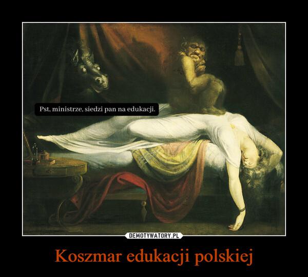 Koszmar edukacji polskiej –