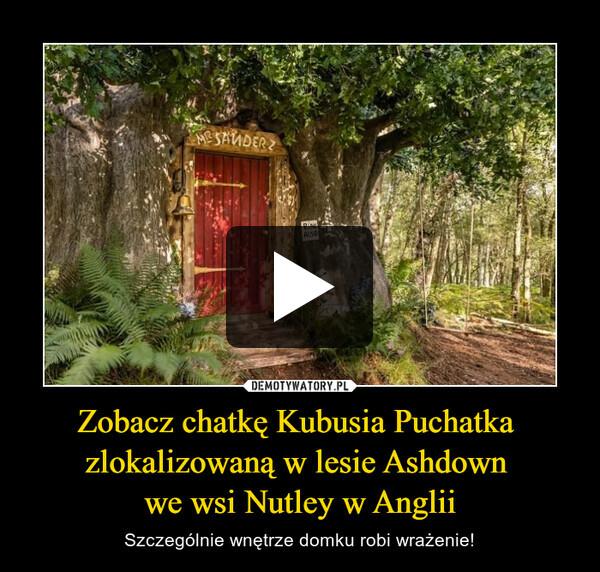 Zobacz chatkę Kubusia Puchatka zlokalizowaną w lesie Ashdown we wsi Nutley w Anglii – Szczególnie wnętrze domku robi wrażenie!
