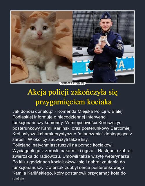 Akcja policji zakończyła się  przygarnięciem kociaka