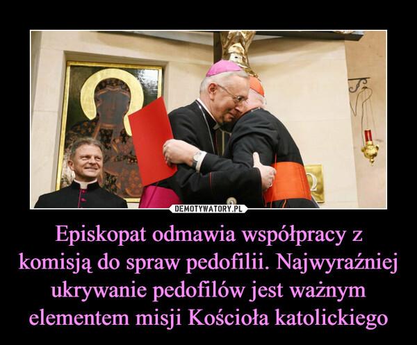 Episkopat odmawia współpracy z komisją do spraw pedofilii. Najwyraźniej ukrywanie pedofilów jest ważnym elementem misji Kościoła katolickiego –