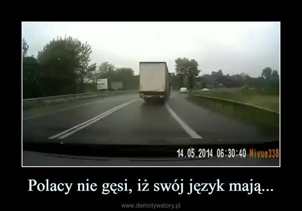 Polacy nie gęsi, iż swój język mają... –